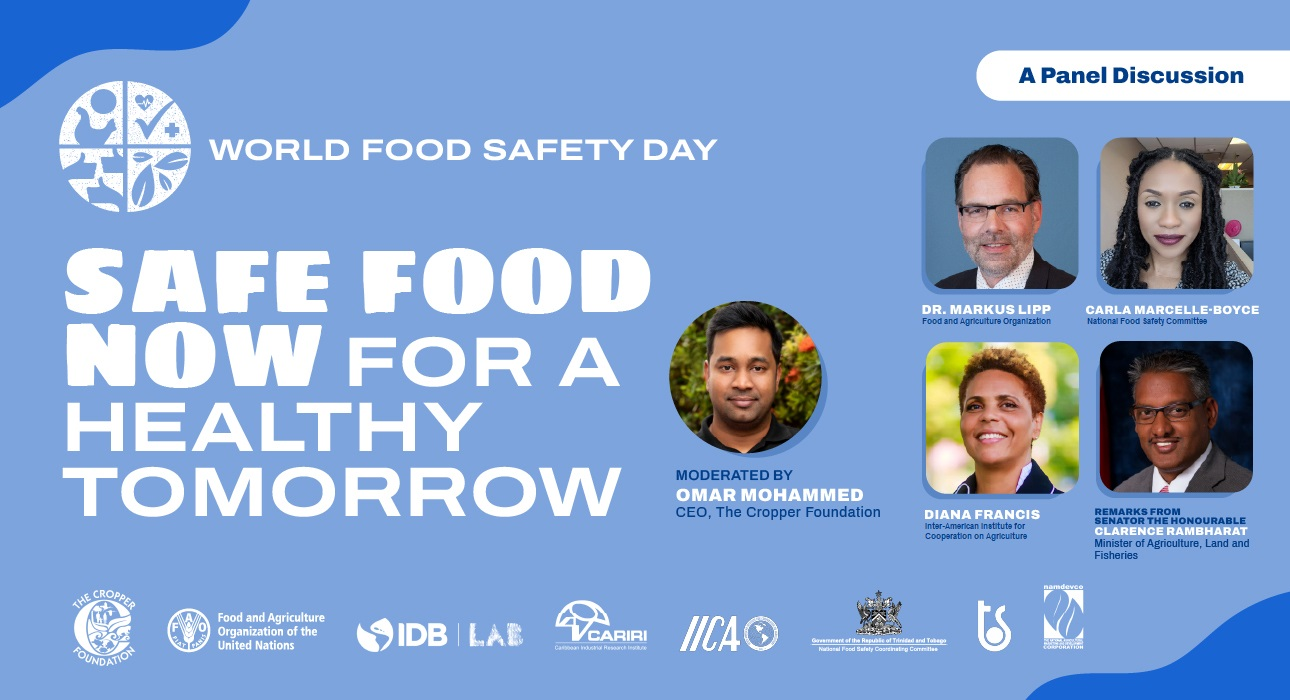 SAFE Food Now for a Healthy Tomorrow Flyer